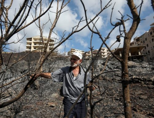 In pictures: Wildfires engulf Syria's coast for the second time this summer