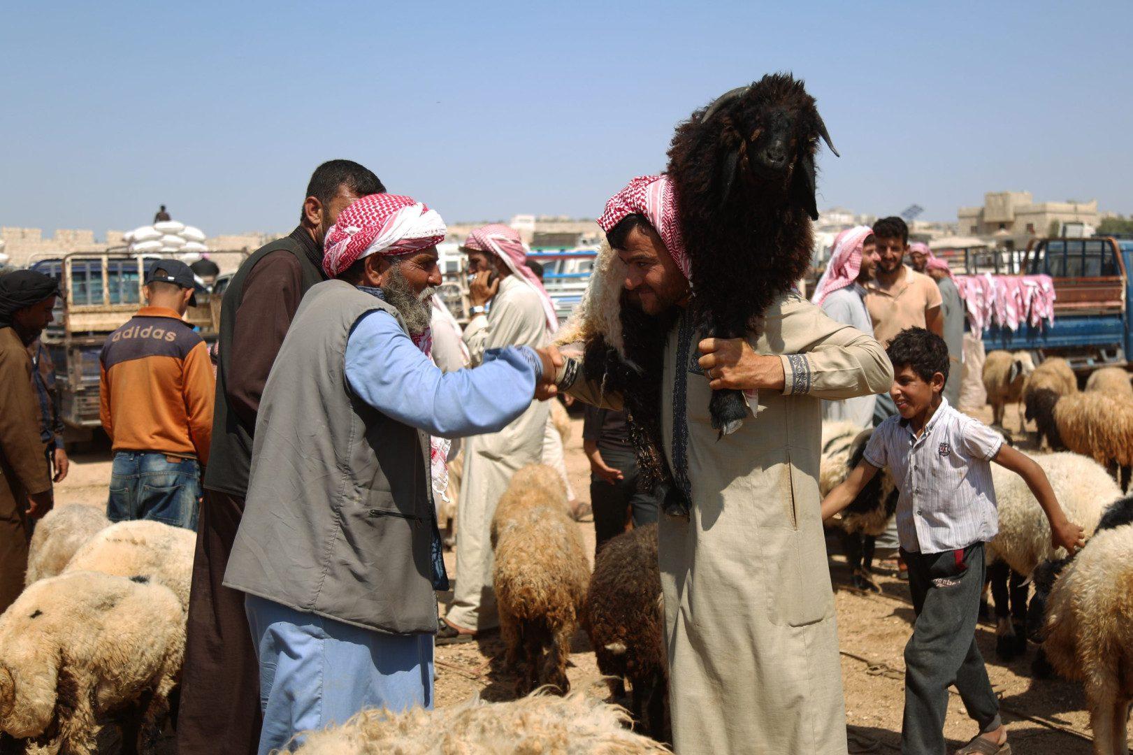 رجل يحمل خروفاً على كتفيه أثناء مصافحته رجلاً آخر في سوق البردقلي للمواشي غرب مدينة الدانا بريف إدلب الشمالي، 20/ 7/ 2021 (سوريا على طول/علي حاج سليمان)